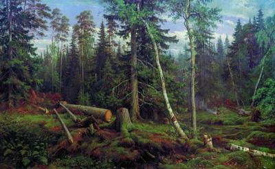 Рубка леса 1867