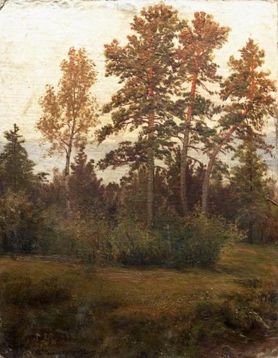 Опушка леса 1892