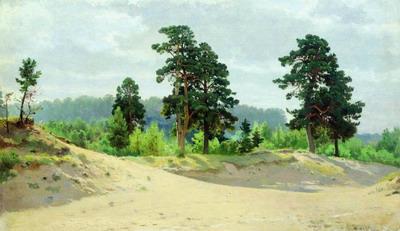Опушка леса 1890