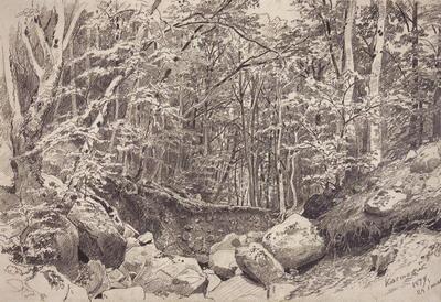 На горе Кастель в окрестностях Алушты 1879