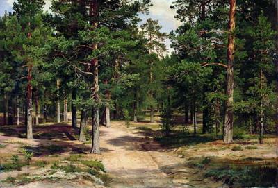 Сестрорецкий бор 1886