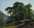 Буковый лес в Швейцарии - 1863 год