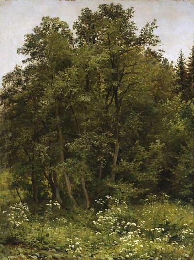 На опушке 1885