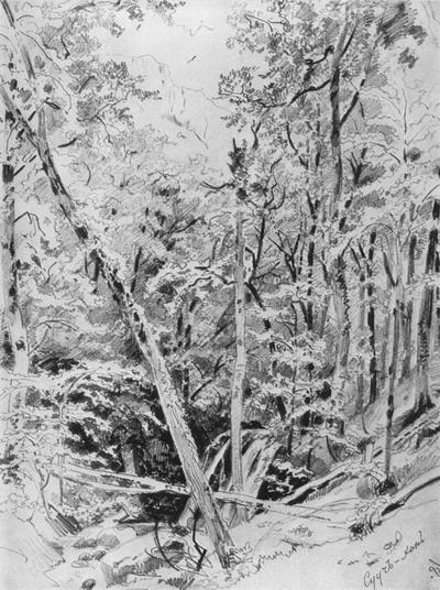 Сууч-Хан. Крым 1879