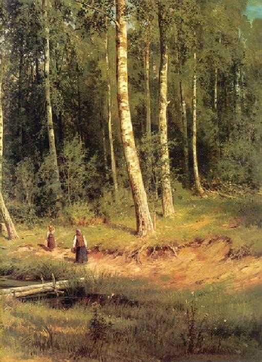 Ручей в березовом лесу.