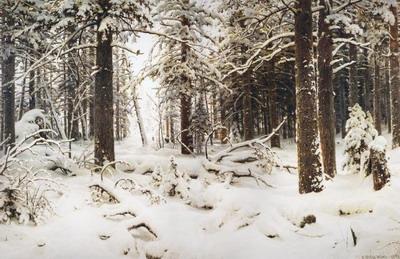 Зима 1890
