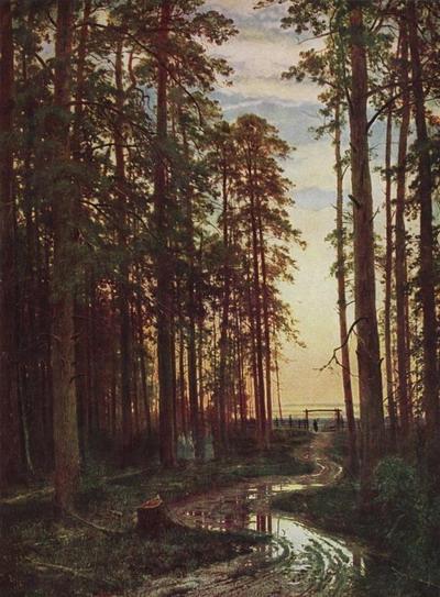 Вечер в сосновом лесу 1875