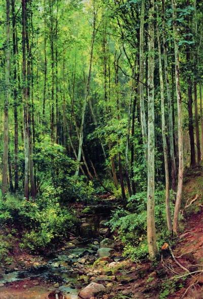 Лес-осинник 1896