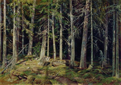 Лес 1888