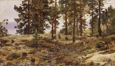На песчаном грунте. Мери-Хови по Финской железной дороге 1889