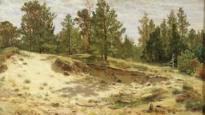 Молодые сосенки у песчаного обрыва. Мери-Хови по Финляндской железной дороге 1890