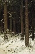 Еловый лес зимой - 1884 год