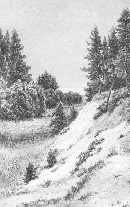 В Сестрорецке.1886