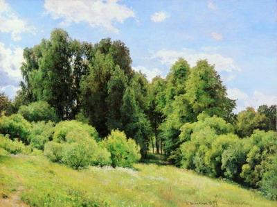Лесная поляна (Полянка). 1897