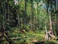 Смешанный лес (Шмецк близ Нарвы) - 1888 год