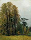 Осень - 1892 год