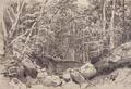 На горе Кастель в окрестностях Алушты - 1879 год