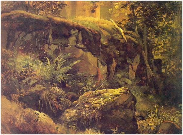 Камни в лесу. Валаам.