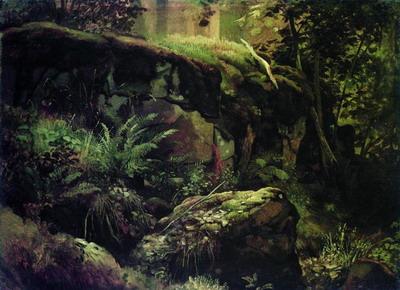 Камни в лесу. Валаам 1859