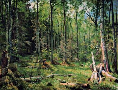 Смешанный лес (Шмецк близ Нарвы) 1888