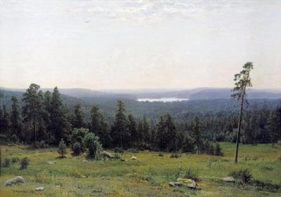 Лесные дали 1884