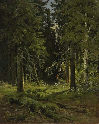 Лесной пейзаж 1878