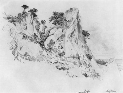 Сосны на отвесных скалах. Алупка 1879