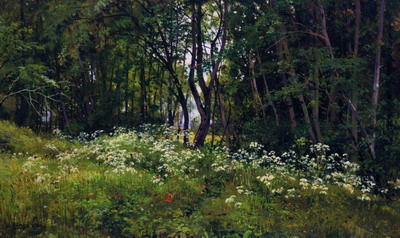 Цветы на опушке леса 1893