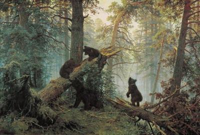 Утро в сосновом лесу 1889