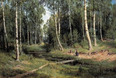 Ручей в березовом лесу 1883